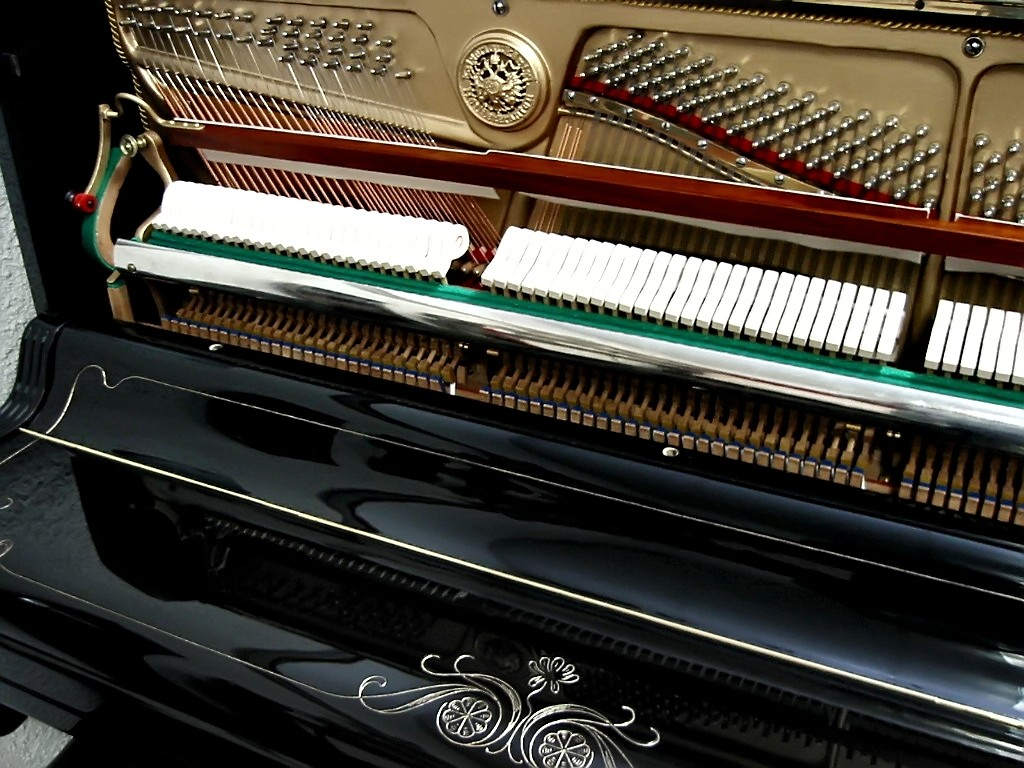 http://www.pianoservice.cz/image/data/reference/gebr. stigl a.jpg